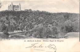 Vallée De La Lesse.  Château Royal De CIERGNON - Houyet