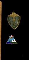 Insigne Militaire Italien 1o Alpini Nec Morari + 4 Divisione Alpina Cuneense / Chasseurs Alpin Italie - Italy