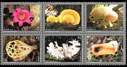 BRAZIL 2019  - DIVERSITY OF FUNGI  - LE FONGUS - FONGO - SET OF 6  - MINT - Unused Stamps