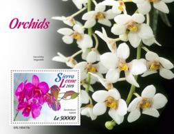 Sierra Leone 2019     Orchids    S201904 - Sierra Leone (1961-...)