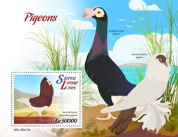 Sierra Leone 2019    Fauna Pigeons   S201904 - Sierra Leone (1961-...)
