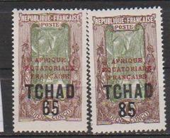 TCHAD         N°  YVERT  :  45/46    NEUF AVEC  CHARNIERES      (  CH 2/33 ) - Tchad (1922-1936)