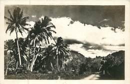 France -  Polynésie Française :  Tahiti  Une Avenue De Papeete ( Carte Photo )  Réf 6682 - Polynésie Française