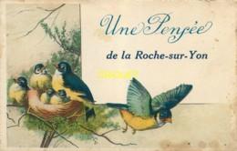 85 La Roche Sur Yon, Ancienne Fantaisie, Une Pensée, Couple De Mésange Et Leur Nid, Pas Courante - La Roche Sur Yon