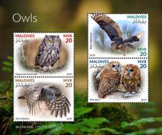 Maldives  2019   Fauna Owls   S201904 - Maldives (1965-...)