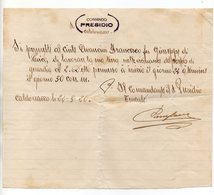 Caldonazzo (Trento) - 24.03.1920 - Autorizzazione Manoscritta Del Comando Presidio - Vedi Descrizione - (FDC16083) - Manoscritti