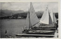 AK 0277  Gmunden - Segelboote Mit Schloss Orth / Verlag Brandt Um 1950 - Gmunden