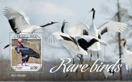 Maldives  2019   Fauna  Rare Birds  S201904 - Maldives (1965-...)