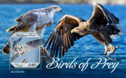 Maldives  2019   Fauna Birds Of Prey  S201904 - Maldives (1965-...)
