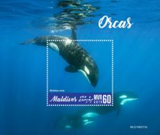Maldives  2019   Fauna Orcas  Whales   S201904 - Maldives (1965-...)