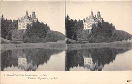 ¤¤  -  LUXEMBOURG   -  Carte-Stéréo   -  FELS   -  Chateau Meysenburg   -  ¤¤ - Larochette