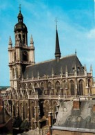 Belgique - Hal - Halle - Sint-Martinusbasiliek  - Carte Neuve - Voir Scans Recto-Verso - Halle