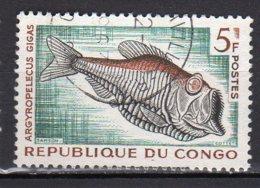 Congo Yvert N° 146 Oblitéré Poissons Lot 2-594 - Usati