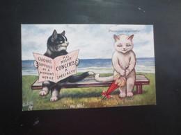 Chats Première Rencontre - Katten