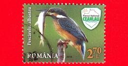 ROMANIA - Usato - 2016 - Ama La Natura! Parco Nazionale Di Ceahlau - Martin Pescatore - 2.70 - 1948-.... Repubbliche