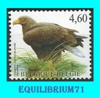 3871** - Pyrargue à Queue Blanche/Zeearend - BUZIN - BELGIQUE - BELGIË - Ungebraucht