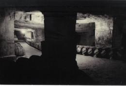 CPA Chateau Cadet Piola - Caves De Vieillissement - Saint Emilion - Photos