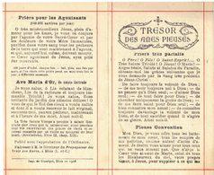 TRESOR DES ÂMES PIEUSES AVE MARIA D'OR PRIERE POUR LES AGONISANTS IMAGE PIEUSE RELIGIEUSE HOLY CARD SANTINI PRENTJE - Andachtsbilder