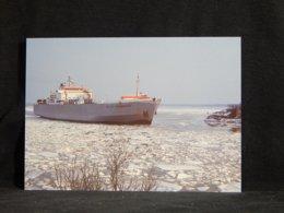 Baltic Progress__(U-313) - Schiffe