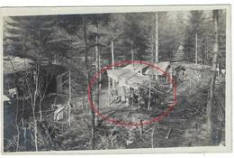 (1914-1918) Karpathen Bukowina  Regio  Suceava Czernowitz Waldlager   Karpathenkorps Allemande Photo Carte - Rumänien