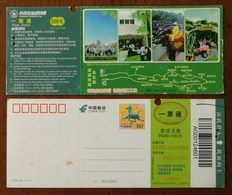 Elephant,giant Panda,safari Area,CN 12 Changsha Ecological Zoo Safari Park Small Size Ticket PSC,perforated Used - Elefanti