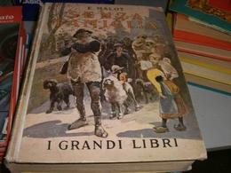 LIBRO SENZA FAMIGLIA 1938 EDIZIONE SALANI - Novelle, Racconti