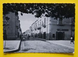 Cartolina San Ferdinando Di Puglia Via XXIV Maggio 1950 - Bari