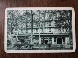 L22/33 Vichy .  Hotel Plaza . Sur Le Parc - Vichy