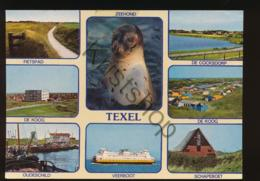 Texel [AA43-6.170 - Paesi Bassi