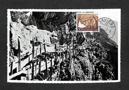 SUISSE - HELVETIA - Carte Maximum 1953 - Bisse De Savièse - Les Brenlires - Cartoline Maximum