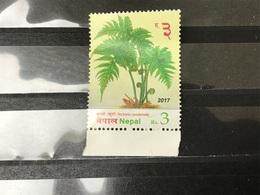 Nepal - Varens (3) 2017 - Nepal