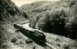 090719B - PHOTO TRANSPORT TRAIN CHEMIN DE FER - MASSIF CENTRAL ? - Loco 141-447 SNCF - Bahnhöfe Mit Zügen