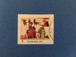 Erinnofilo Chiudilettera Vignetta Etichetta Bollino Cinderella TENNESSEE 1975 Natale Noel Christmas - Erinnofilia