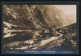 NORGE - GUDVANGEN MOD NAERODALEN - PHOTOGRAPHICUM  A.S. HAGEN  MOLDE - 14.8 X 9.8 CM - Norwegen
