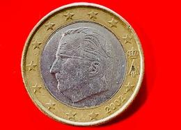 BELGIO - 2002 - Moneta - Effige Di  Re Alberto II - Euro - 1.00 - Belgio