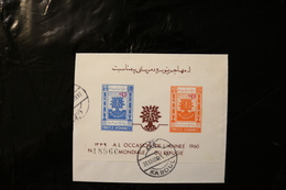 Afghanistan WRY World Refugee Year Uprooted Oak Plus Ovpt Cancelled On Piece Souvenir Sheet Block 1960 A04s - Afghanistan