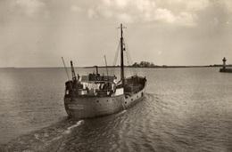 CPSM St-Vaast-la-Hougue L'Ile De Tatihou - Wilhemina Groningern - Pêche