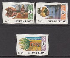 1988 Sierra Leone IFAD Coffee Rice Complete Set Of 3 MNH - Sierra Leone (1961-...)