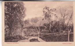 1900's RARISIME CPA URUGUAY- PIRIAPOLIS PINTORESCO. SOBRE LA PLAYA. TALLER PEUSER - BLEUP - Uruguay
