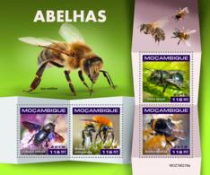 Mozambique  2019 Fauna  Bees    S201904 - Mozambique