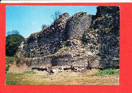 59 BAVAY Cp Mur Sud Et Enceinte Antique    3771 Pierron - Bavay