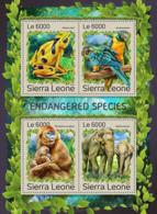 Sierra Leone 2016 Fauna Endangered Species Frog Elephant  Monkey Parrot - Sierra Leone (1961-...)