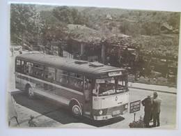 (1964) Route Paris  Nice - Bus Autocar Berliet Faisant Halte - Coupure De Presse Originale (encart Photo) - Documents Historiques