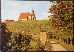 Ak Deutschland - Volkach  - Kirche,church - St. Maria Im Weingarten - Kirchen U. Kathedralen