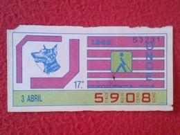 CUPÓN DE ONCE SPANISH LOTTERY LOTERIE SPAIN CIEGOS BLIND LOTERÍA ESPAÑA 1986 PERRO DOG CHIEN DOBERMAN ANIMAL VER FOTO - Billetes De Lotería