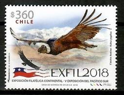 Chile 2018 / Birds Condor MNH Aves Vögel Oiseaux / Cu13124  18-39 - Pájaros