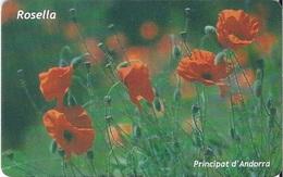 ANDORRA - Papaver Rhoeas (Rosella) - FLOWER - Andorra