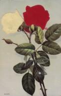 AR37 Novelty Postcard - Embossed Roses, Applied Felt - Fancy Cards