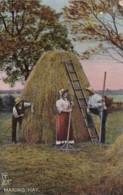 AR37 Social History Postcard - Making Hay - Tuck In Farmland Series - Farmers