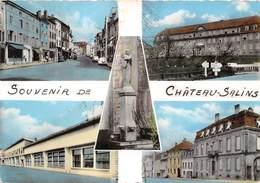 57-CHATEAU-SALIN-MULTIVUES - Chateau Salins